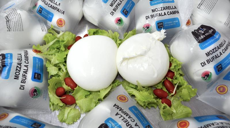 Mozzarella-sito